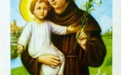 Sant'Antonio liberaci dagli ipocriti e dagli opportunisti